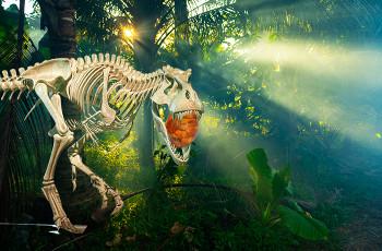 Dinozaury - biżuteria Balt